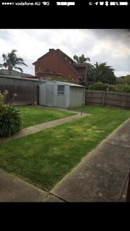 ANZO LAWN MOWING AND TREE SERVICE