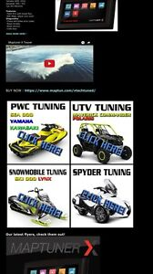 Snowmobile tuner Stratford Kitchener Area image 1