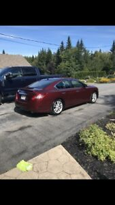 2009 Nissan Maxima, fully loaded