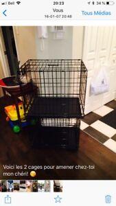 2 cages à chien - Bonne condition