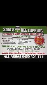 SAMS BUDGET TREE LOPPING Bankstown Bankstown Area Preview