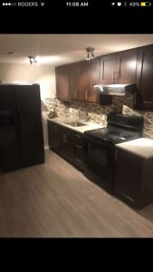 Basement suite for rent SW calgary