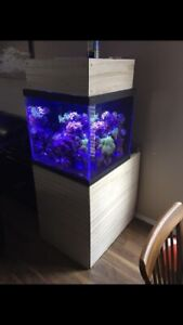 60 Gallon Cube Display Aquarium