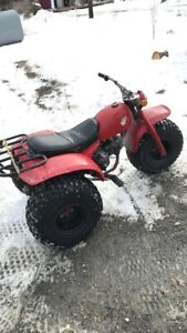 Looking to trade my 3 wheeler and snowmobile for something else