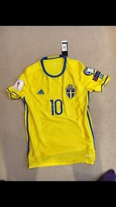 Sweden soccer jersey (new with tags)