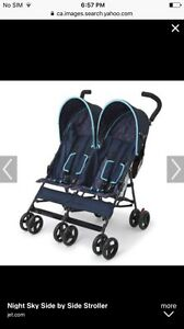 Looking for side by side double stroller!