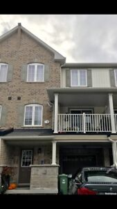 Waterdown home for rent