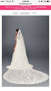 Stunning cathedral lace veil in ivory from davids bridal