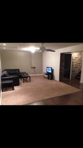Basement suite in Fort Sask available immediately