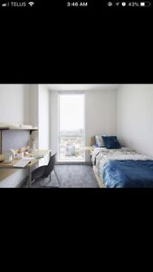 BEAUTIFUL LUX MODEL SUITE AVAILABLE FOR SUBLET