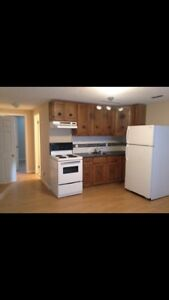 1 bedroom legal suite. Util & laundry included
