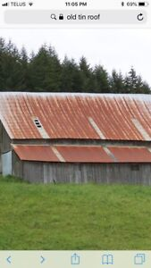 Looking for Old Tin Roof