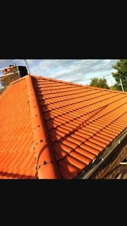 Roof painting & repairs (Free Quotes)