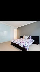 Large double bedroom for rent in April! Maylands Bayswater Area Preview