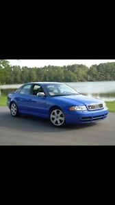 Looking for a b5 s4 biturbo