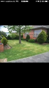 ANDY LAWN MOWING AND GARDENING SERVICE Richmond Yarra Area Preview