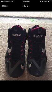 Nike Lebron Miami nights