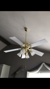 Ceiling lights and ceiling fan
