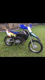 2008 Yamaha ttr110