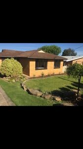Room for rent in Kooringal Kooringal Wagga Wagga City Preview