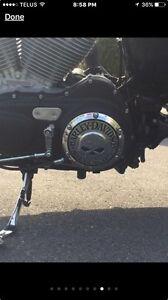 Harley Davidson Sportster Custom low km