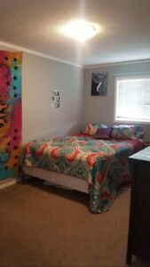 Room for Rent in Creekside