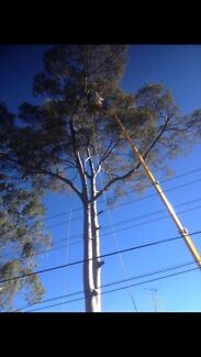 ISAACS STATE TREE LOPPING SERVICE