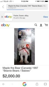 Ty brand maple the bear beanie baby for sale