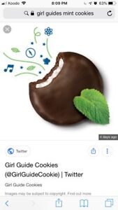 Girl guides mint cookies