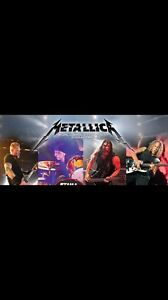 2 Lower bowl tickets for Metallica