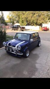 1981 Mini