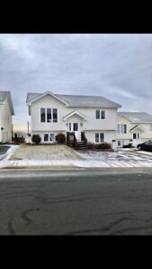 Beautiful 2 Apartment Home Located In The West End Of St.John's