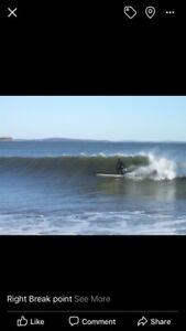 Surfer's paradise! Private sale