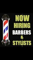 Wanted barber / hairstylist
