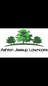 Weekly & Bi-Weekly Lawn Care and More!!
