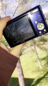 Sony Camera + battery charger