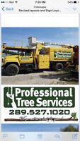 Winter special is here 15% off all tree work till February!!!