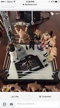 Wwe figurines, ring and belt Morpeth Maitland Area Preview