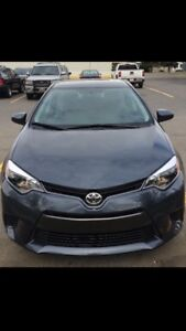 Toyota Corolla 2016 LE automatic -14780kms only