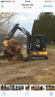 Tree removal - landscaping and excavation
