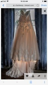 Size 20 Madison Collection champagne/pink wedding dress
