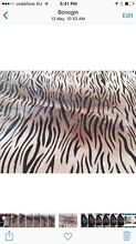 Large natural cow hide Bonogin Gold Coast South Preview