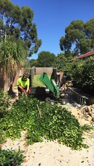 Tree cutting and removal up to 8 m high