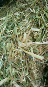 Fresh Oaten Hay/Meadow Hay/Mix Food n Pellets/Dry straws Shelley Canning Area Preview