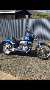 Harley New Norfolk Derwent Valley Preview