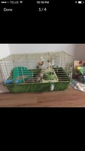 Rat, Guinea, or small Rabbit cage for sale.