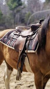 western saddle for sale!