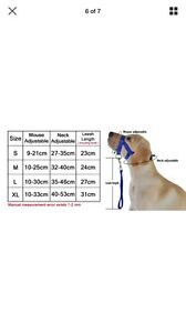 Training harness Capalaba Brisbane South East Preview