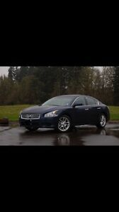 Nissan Maxima - Luxury Car/Perfect Condition