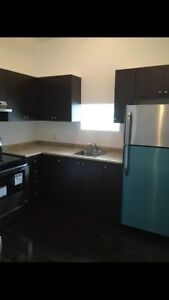 Brand New 2 bedroom apartment for rent in Palmerston TG Minto
